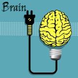Cérebro conectado Imagem de Stock