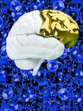 Cérebro creativo Fotografia de Stock Royalty Free