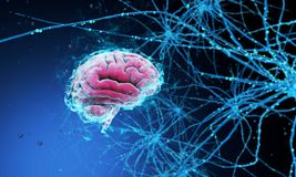 cérebro 3D humano ilustração royalty free