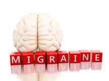 cérebro 3d humano com palavra da enxaqueca nos cubos ilustração stock