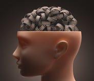 Cérebro da estrada ilustração stock