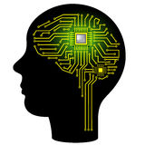 Cérebro de Digitas Imagem de Stock Royalty Free