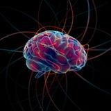 Cérebro de pensamento Fotos de Stock Royalty Free