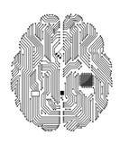 Cérebro do cartão-matriz Fotografia de Stock Royalty Free