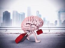 Cérebro do escape Foto de Stock Royalty Free
