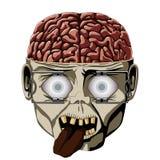 Cérebro do zombi Foto de Stock Royalty Free