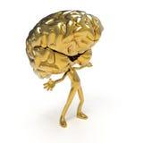 Cérebro dourado fotografia de stock royalty free