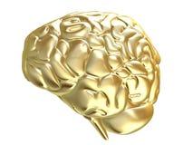 Cérebro dourado Foto de Stock Royalty Free