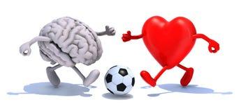 Cérebro e coração com seus braços e pés que correm a uma bola de futebol Fotos de Stock