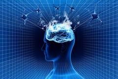 Cérebro e neurônio Foto de Stock