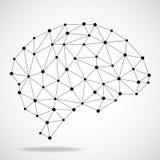 Cérebro geométrico abstrato, conexões de rede Fotografia de Stock