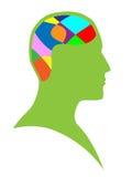 Cérebro humano ilustração do vetor