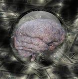 Cérebro humano com moeda ilustração do vetor