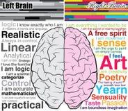 Cérebro humano deixado e direito, o que você é Imagens de Stock