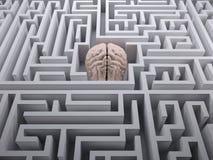 Cérebro humano no labirinto do labirinto Foto de Stock