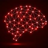 Cérebro poligonal abstrato Fotos de Stock