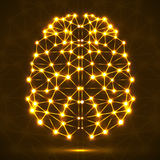Cérebro poligonal abstrato com pontos e linhas de incandescência Fotografia de Stock