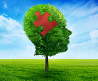 Cérebro principal do enigma que aprende o símbolo Fotografia de Stock Royalty Free