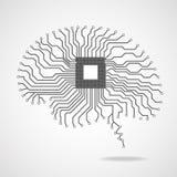 cérebro Processador central Placa de circuito Imagens de Stock Royalty Free