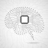 cérebro Processador central Placa de circuito Foto de Stock Royalty Free