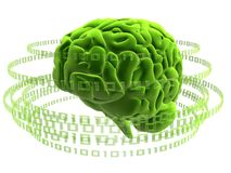 Cérebro verde Imagens de Stock