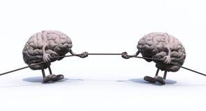 Cérebros humanos e corda da guerra ilustração stock