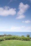 Césped bajo el cielo claro Foto de archivo libre de regalías