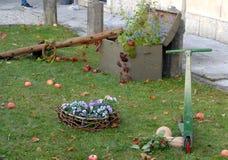 Césped con las manzanas rojas y las flores coloridas en el castillo de Strassoldo Friuli (Italia) Imágenes de archivo libres de regalías