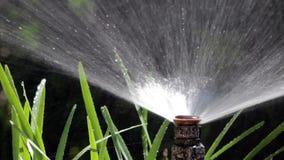 Césped de riego de Bubler de la irrigación del jardín - tiro POV 04