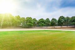 Césped del campo de golf foto de archivo libre de regalías