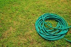 Césped del manguito Foto de archivo libre de regalías