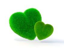 Césped en forma de corazón Imagen de archivo libre de regalías