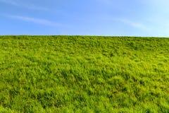 Césped verde claro fresco en la colina y el cielo Fotografía de archivo libre de regalías