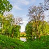Césped verde con los árboles Imágenes de archivo libres de regalías