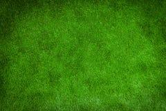 Césped verde para el fondo Fotos de archivo