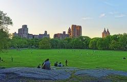 Césped verde y horizonte de Manhattan en el Central Park del oeste imágenes de archivo libres de regalías
