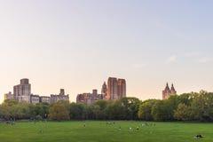 Césped verde y horizonte de Manhattan en el Central Park NYC del oeste foto de archivo libre de regalías