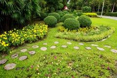 Césped y parque verdes de los árboles imagenes de archivo