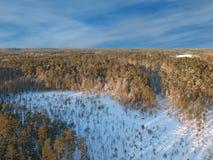 Céu aéreo do taiga 5 fotografia de stock royalty free