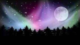 Céu abstrato de Forest Multicolored Northern Lights Aurora Borealis ilustração stock
