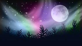 Céu abstrato de Forest Multicolored Northern Lights Aurora Borealis ilustração do vetor