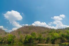 Céu acima das árvores na floresta Foto de Stock Royalty Free