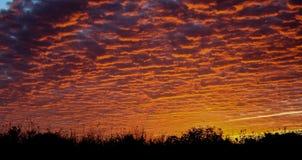 Céu alaranjado Fotos de Stock Royalty Free