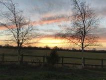 Céu alaranjado no alvorecer Fotografia de Stock