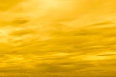 Céu amarelo do por do sol foto de stock