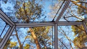 Céu através da barraca Imagem de Stock