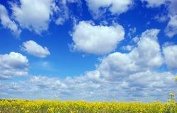Céu azul Foto de Stock