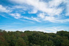 Céu azul bonito e floresta verde no horizonte Imagem de Stock