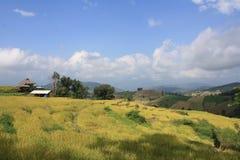 Céu azul bonito, nuvens brancas e exploração agrícola Imagens de Stock Royalty Free