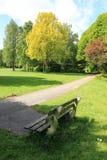 Céu azul com nuvens, um banco de madeira e as árvores no parque na mola Fotos de Stock